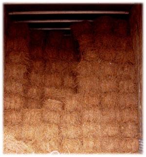 Pine Straw Supply