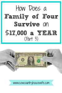How Does a Family of Four Survive on $17,000 a YEAR (Part 3)
