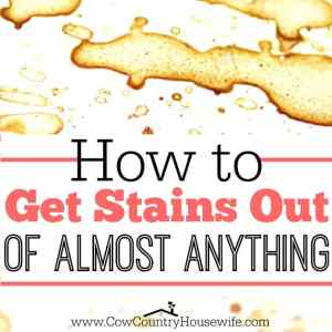 How to Get Stains Out of Almost Anything