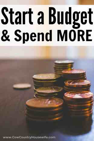 Starting a budget allows you to spend MORE money. Yes, it's true! You'll never look at your budegt the same way again after this. If you can't save money, this is for you! Budgeting Allows You to Spend MORE .