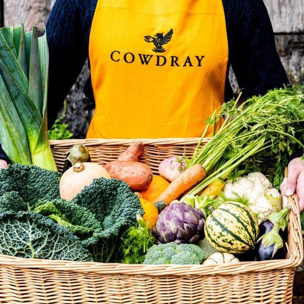 Farm Shop Assistants at Cowdray