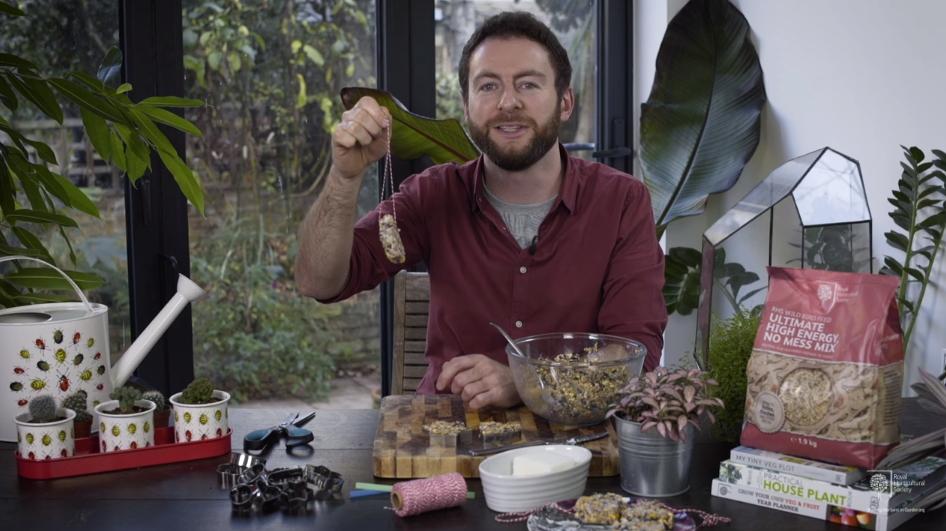 DIY birdseed cake feed the birds recipe