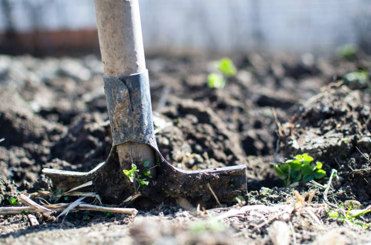 working in the garden shovel dirt helpful tips for growing fruit and vegetables in and around your home