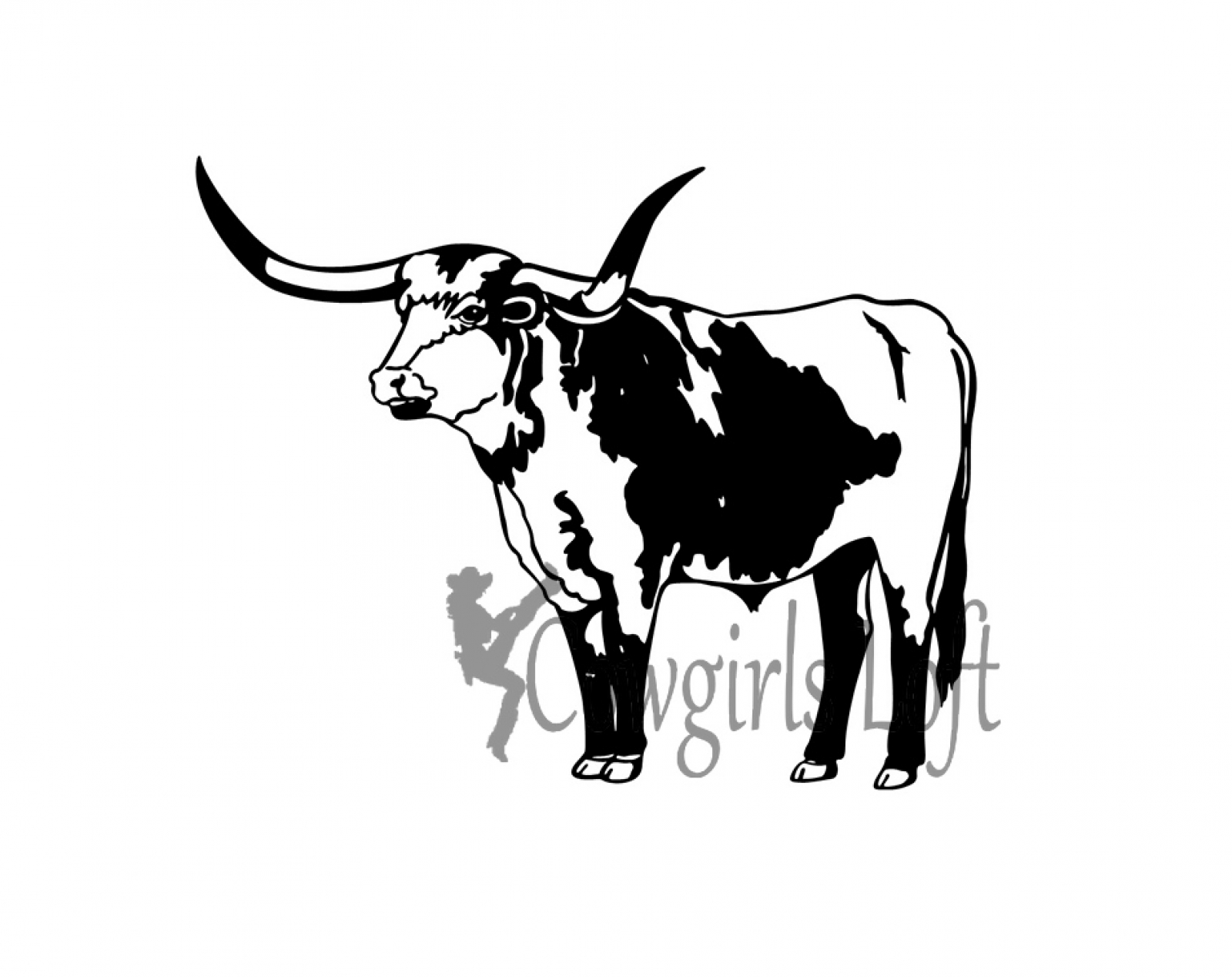List Of Synonyms And Antonyms Of The Word Longhorn Steer