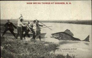 goshen-fishing-clickbait