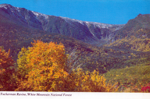 Tuckerman Ravine 2