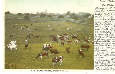 Postcard of HP Hood Farm in Derry NH