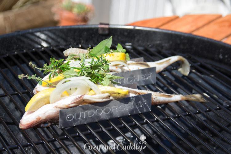 Fisch Grillen ganz einfach. leckere und schnelle Rezepte für den Gasgrill
