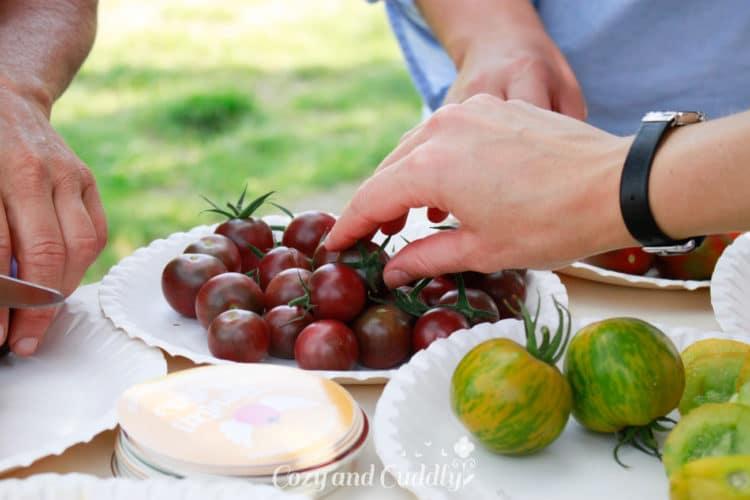 So probierte ich zum ersten mal grüne und dunkelrote Tomaten.