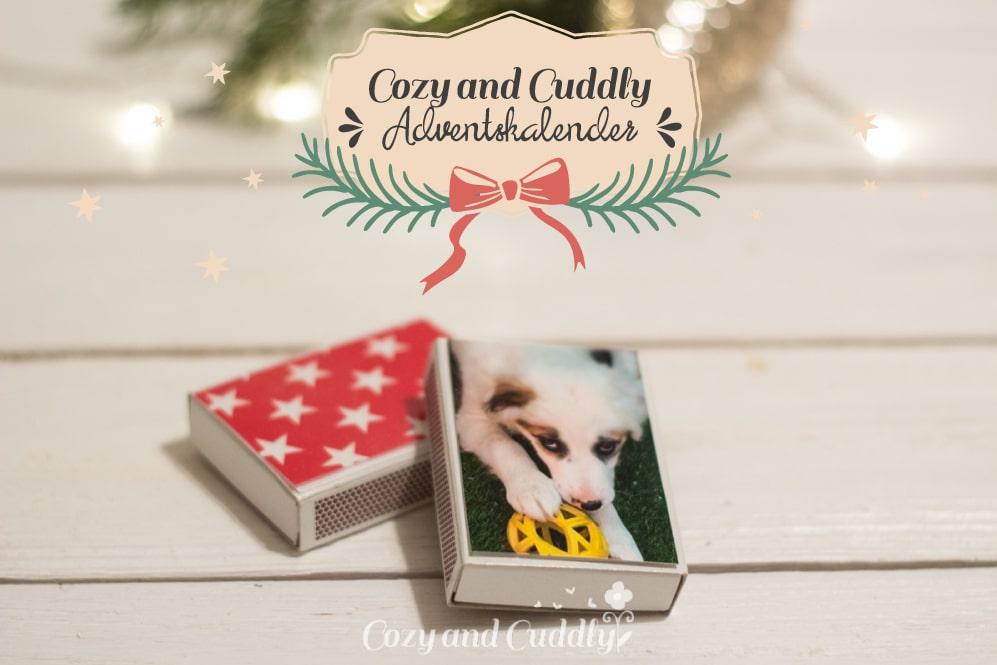 Advent: individuelle Streichholzschachteln basteln, cozy & cuddly Adventskalender