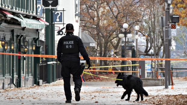 Don't buy one before reading these reviews. Quebec City Halloween night stabbing suspect returns to court for brief hearing | CP24.com