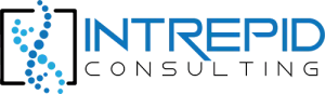 Intrepid Consulting Logo