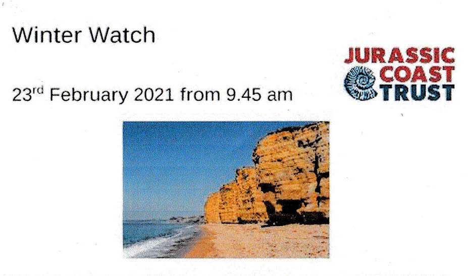 JURASSIC COAST TRUST – VIRTUAL WINTER WATCH