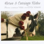 HORSE AND CARRIAGE RIDES AT SYMONDSBURY