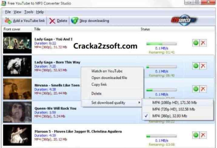 DVDVideoSoft Premium Key screenshot