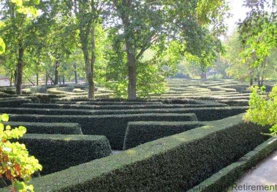 Cracking Retirement Maze