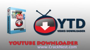 YTD Video Downloader Pro 5.8.5 Full Crack