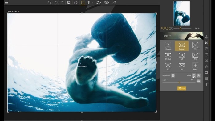 InPixio Photo Clip Professional Windows