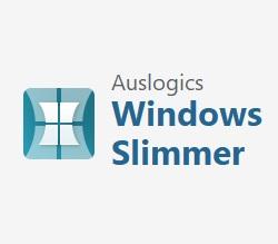 Auslogics Windows Slimmer Professional 3.0.0.3