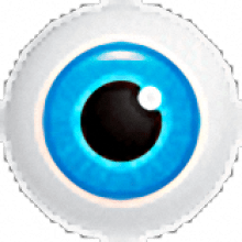 hetman-internet-spy Free download