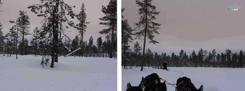 landscape husky ride