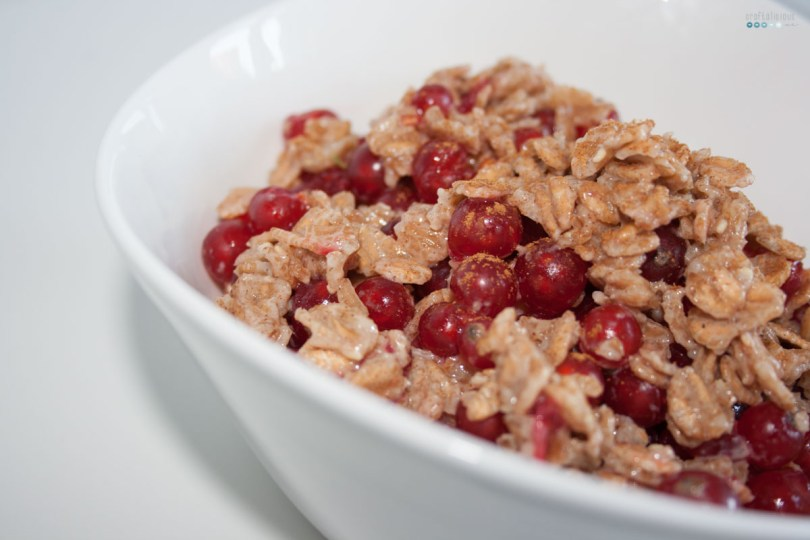 Fruity Warm Breakfast Oats red current