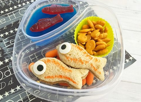 As school is quickly approaching, you'll need to decide hot or cold lunch for your kiddos. If you happen to choose cold, our Fishy Bento Box Lunch is the way to go.