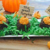 Pumpkin Patch Halloween Treats