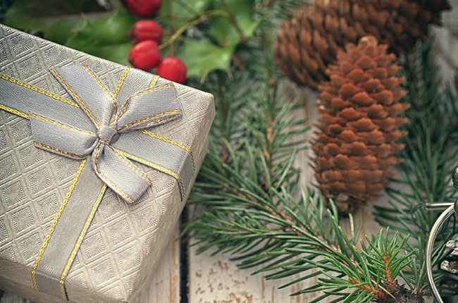 The holiday season can be stressful, so much to do, so many gifts to buy and so little time. Groupon Goods is the perfect place to find gifts for everyone!