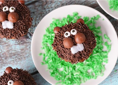 No matter what the prediction, these Groundhog Day Cupcakes will bring a smile to your family!