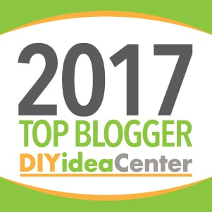 Craft Create Cook makes DIYideaCenter's top 100 projects list!