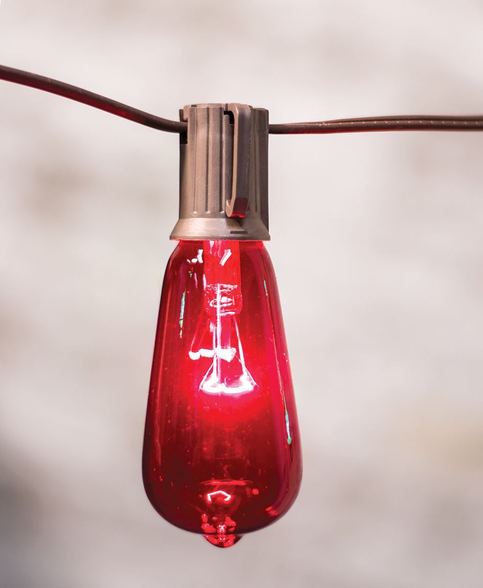 Craft House Designs Wholesale Red Amp Green Edison String