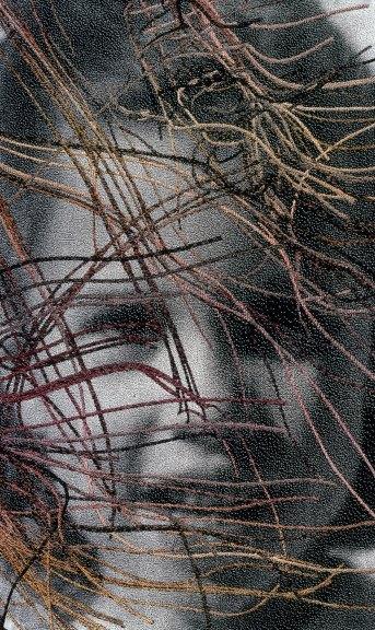 Lia Cook, Dark Traces