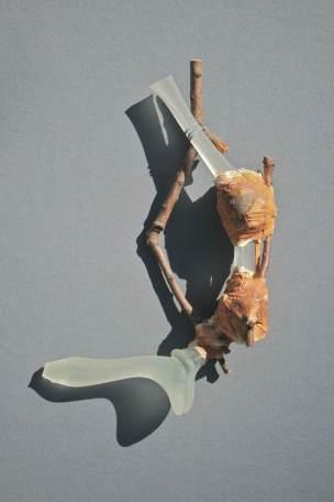 Michael Aschenbrenner, Damaged Bones Series Detail
