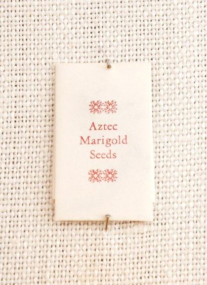Catherine Alice Michaelis, Aztec Marigold: Tagetes erecta, 2005