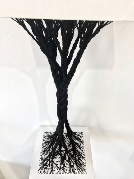 Sonya Clark, Rooted and Uprooted, 2017