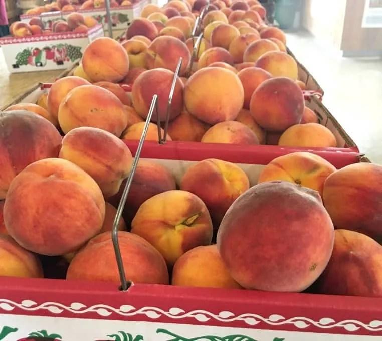 Farm Market Peach Baskets