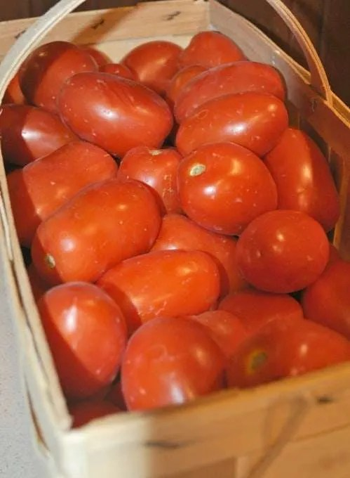 Canning Garden Tomatoes and Family Spaghetti Sauce #canningtomatoes #canning #spaghettesauce