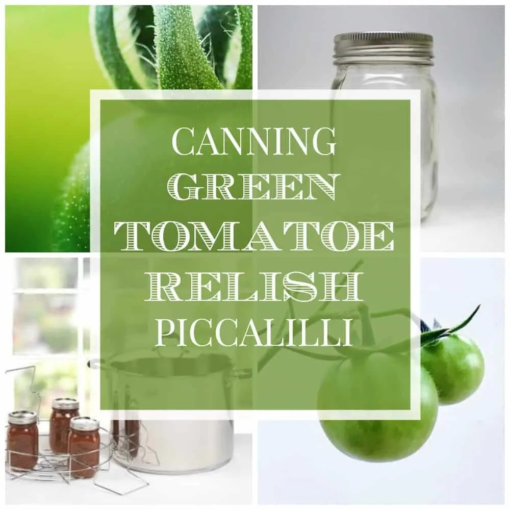 As the garden growing season ends this is a wonderful full bodies relish and an easy canning for green tomatoes, try this Piccalilli for the Thanksgiving holiday or any holiday meal.