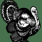 b-w-turkey