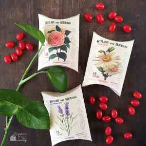 Flower Seed Packet Treat Boxes