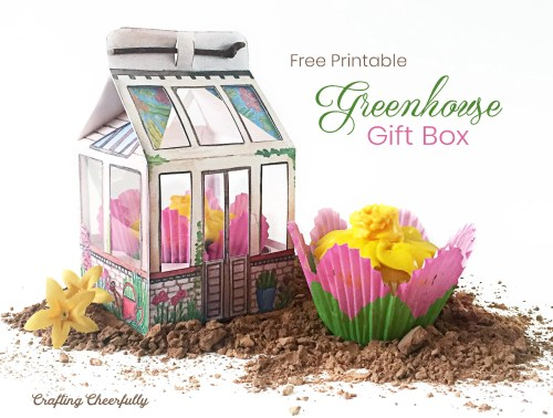 DIY Greenhouse Gift Box