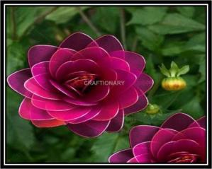 make-nylon-flower-dahlia-from-scratch