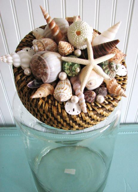 seashells jars beach activities