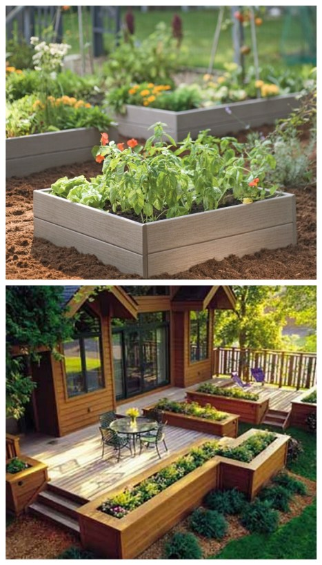 DIY raised garden