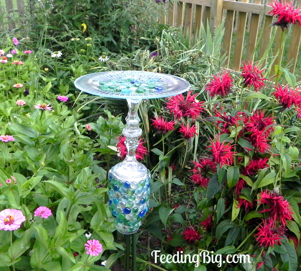 fancy butterfly feeder tutorial