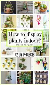 How-to-display-plants-indoor