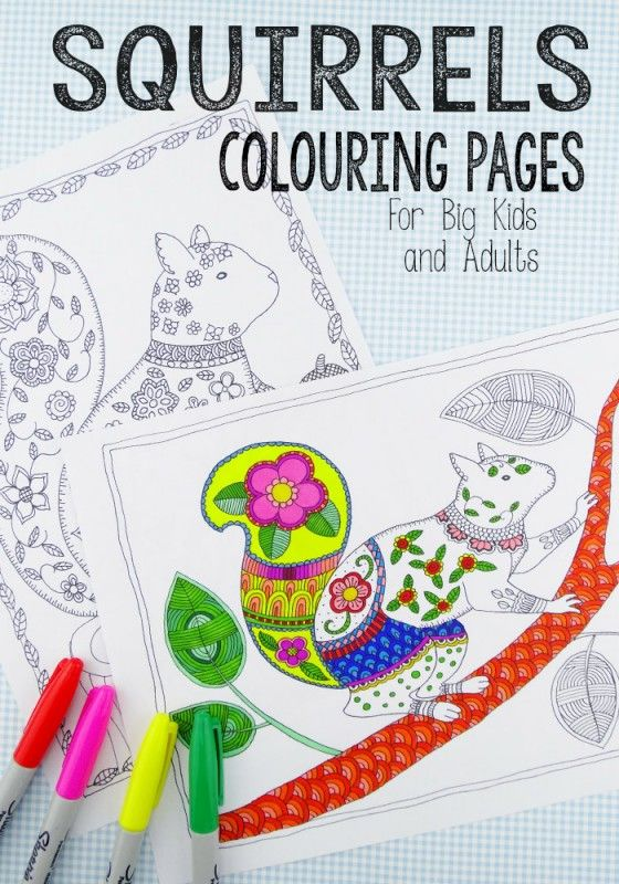 squirrel-coloring-pages