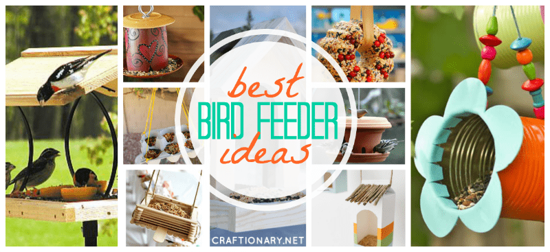 DIY bird feeders best ideas tutorials