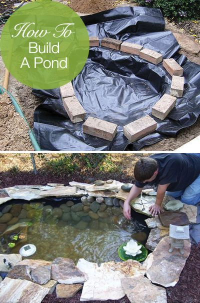 How to build a pond DIY water gardens